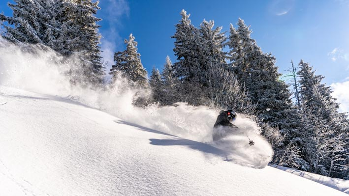 Ski powder turn in the forest.